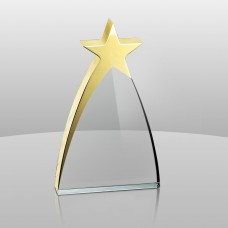 936 New Star Award